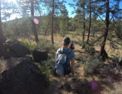 Hike the Riley Ranch Nature Preserve
